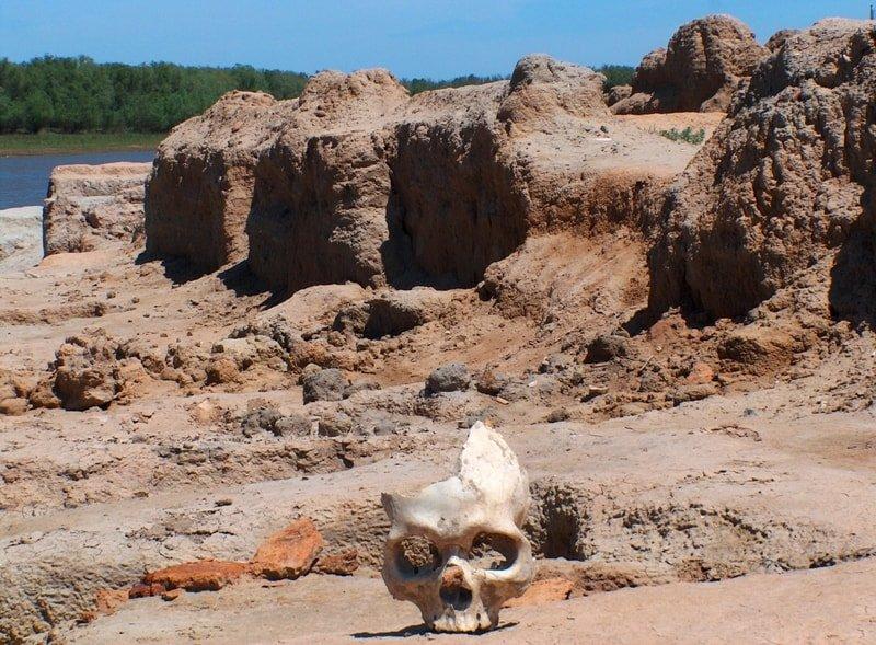 В Сарайшыке археологи возобновили поиск загадочной крепости, фото-7, Фото: silkadv.com