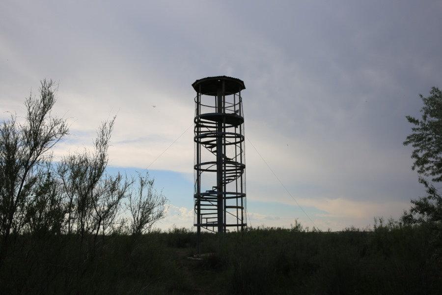 Аким Атырауской области: «Не бывает урона природе значительного или незначительного», фото-9, Фото: РСК Атырауской области.