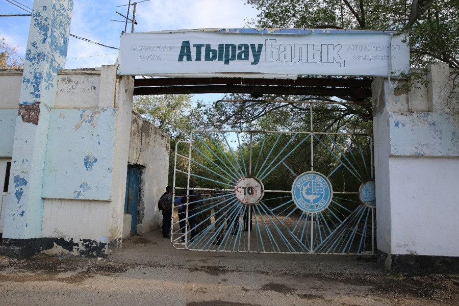 Аким Атырауской области: «Не бывает урона природе значительного или незначительного», фото-10, Фото: РСК Атырауской области.