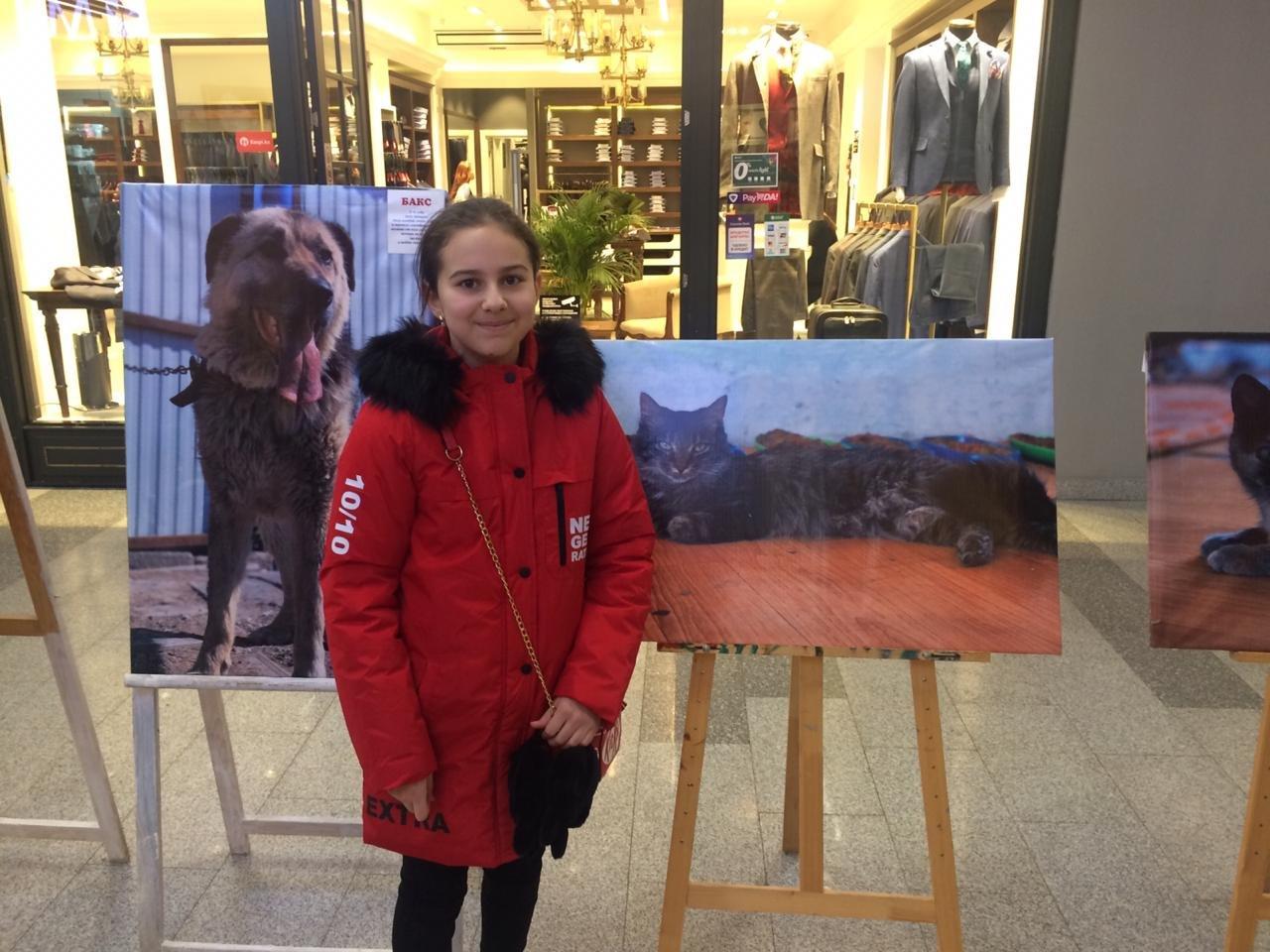 Фотовыставка в поддержку бездомных животных прошла в Атырау, фото-1