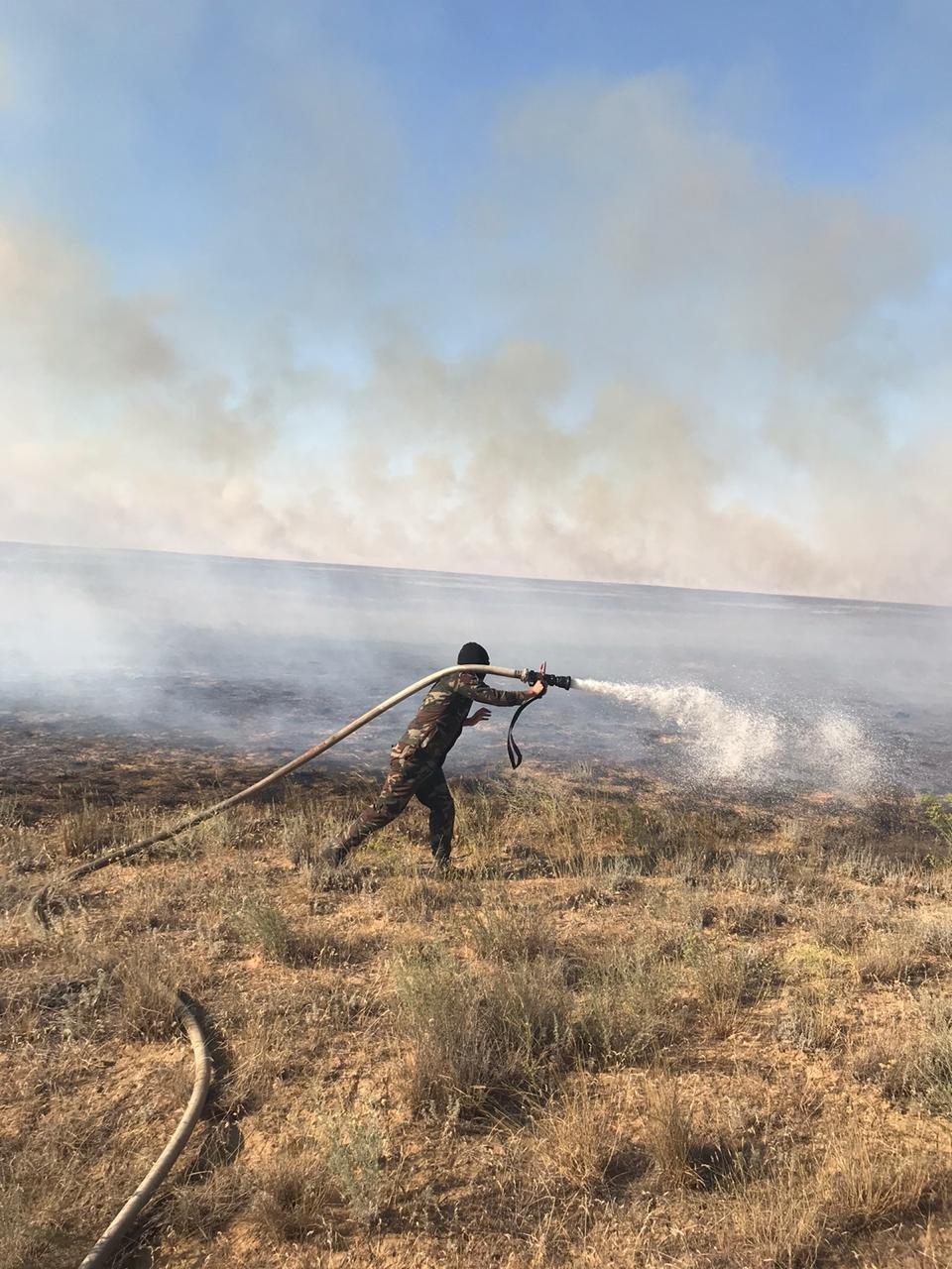 Степной пожар произошел в Кызылкугинском районе Атырауской области, фото-2