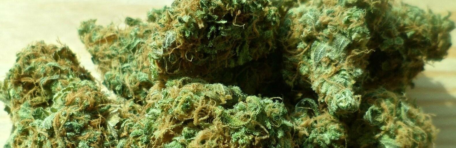 Роды с марихуаной марихуана род